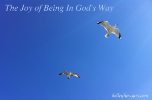 Freedom in God's Way